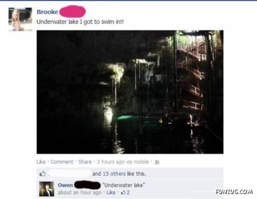 roof From Facebook That People Are Idiots
