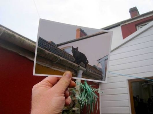 Cool Photos Mixed With Reality