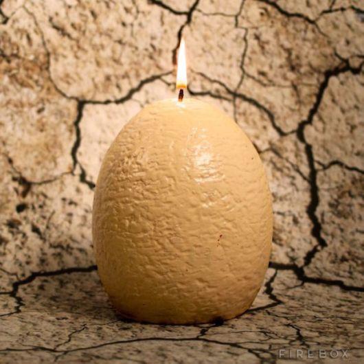 The Amazing Dinosaur Egg Candle