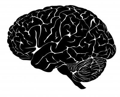 How Negative Thoughts Damage Your Brain
