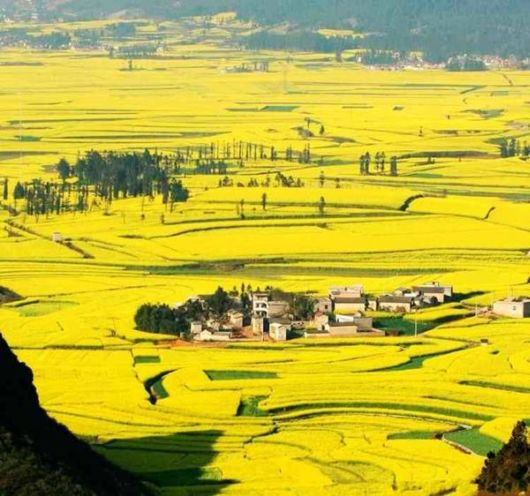 The Natural Golden Mountains Of China