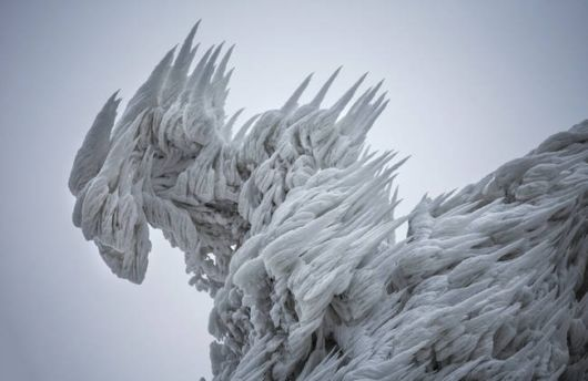 Otherworldly Beauty Of Rime Ice Captured In Photos