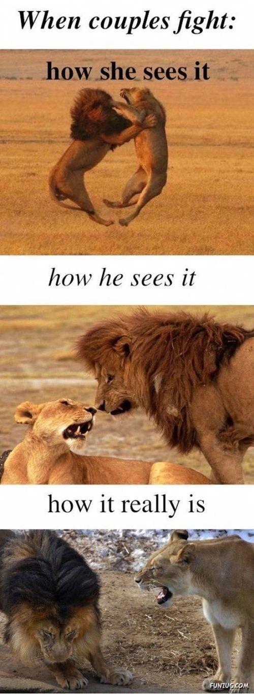 Men Vs Women Crazy Pictures