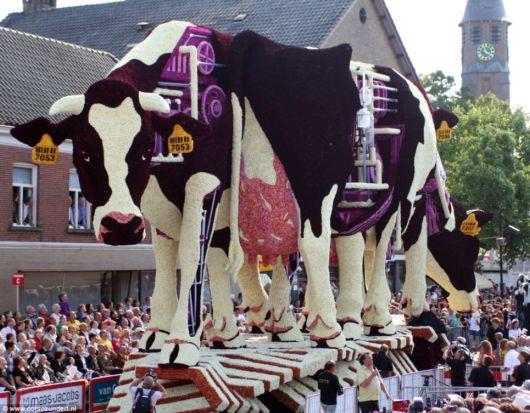 Stunning Flower Parade Of Holland