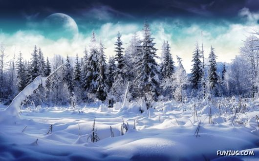 Beautiful Winter Special Wallpapers